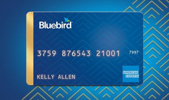 Bluebird - Walmart.com
