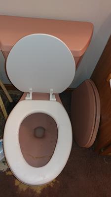 Achim Fantasia 19 Soft Elongated Vinyl Toilet Seat Elongated White Walmart Com Walmart Com