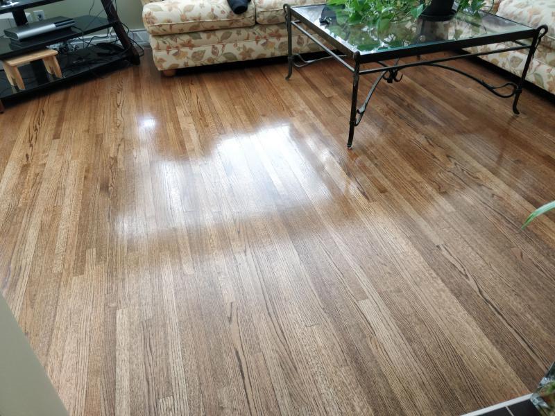 How To Get Dog Prints Off Hardwood Floors Carpet Vidalondon