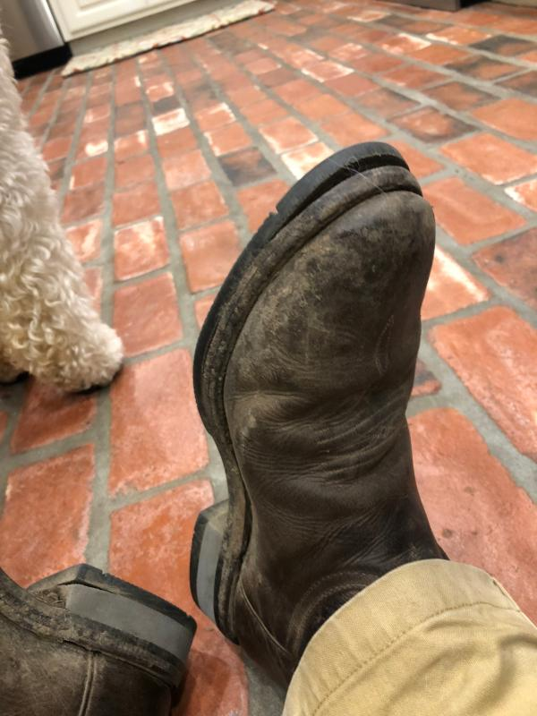 Men's Lucchese Bootmaker Rusty C Toe