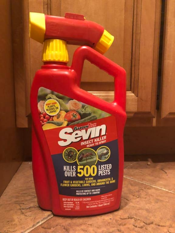 Sevin Insect Killer Ready to Use Hose End, 1 Quart