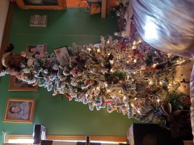 Rvs Tv Kast.Holiday Time Pre Lit Flocked Frisco Pine Christmas Tree 6 5
