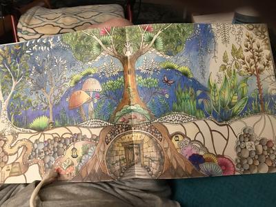 Enchanted Forest: An Inky Quest & Coloring Book (Paperback) - Walmart.com -  Walmart.com