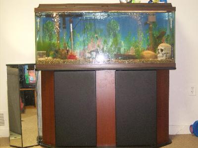 Aqua Culture Deluxe 55 Gallon Aquarium Stand Walmart Com Walmart Com
