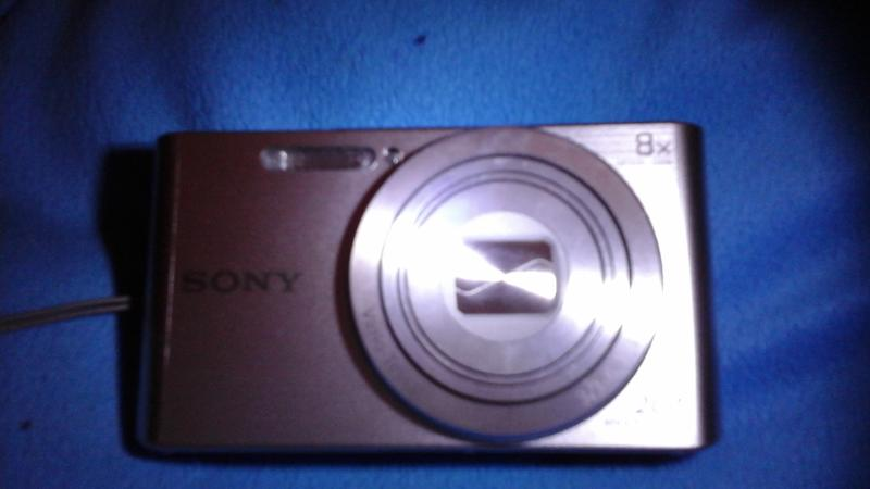Sony DSC-W830 Digital Camera with 20.1 Megapixels and 8x Optical Zoom (Available in Black or Silver) - Walmart.com