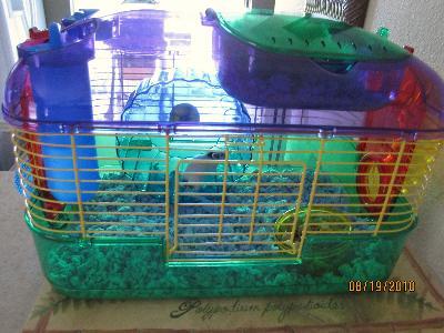 super pet crittertrail one level habitat walmart com