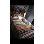 Mainstays Kokopelli Bed In A Bag Coordinated Bedding