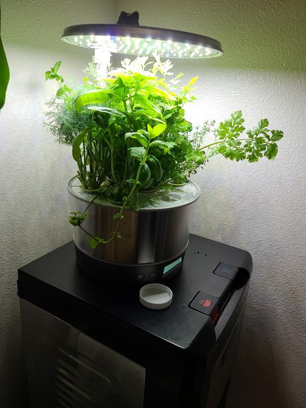 Aerogarden Harvest Elite 360 Platinum With Gourmet Herbs Seed Kit Walmart Com Walmart Com
