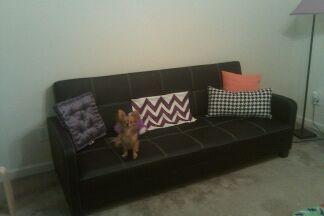 Stupendous Dhp Delaney Sofa Bed Multiple Colors Beatyapartments Chair Design Images Beatyapartmentscom