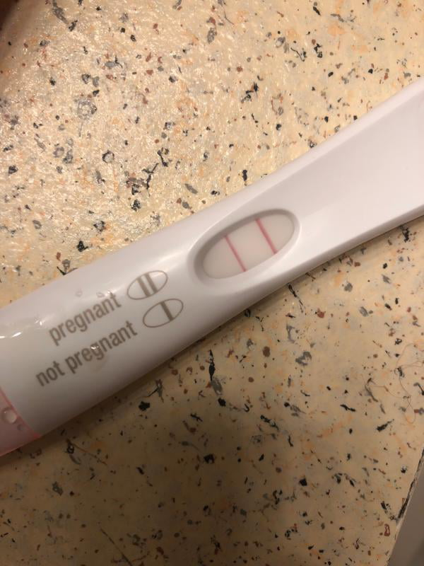 First Response Early Result Pregnancy Test, 3 Pack