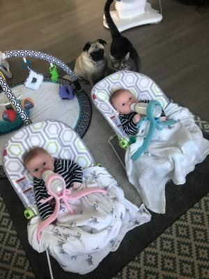 Triplets Multiples BABY BOTTLE HOLDER Twins Hands Free Feeding Paw Prints