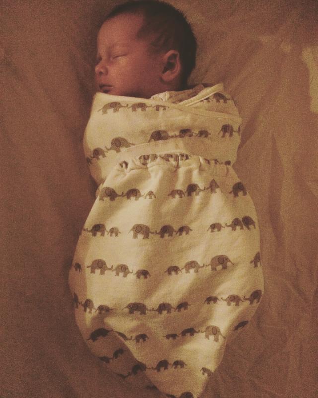 Ergo Baby Baby Original Swaddler Elephant