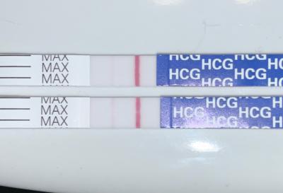 Pregmate 25 Pregnancy Test Strips 25 Pack Walmart Com